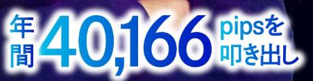 フレームトレードFX・年間40166pips.PNG